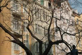 Tree and Buildings - Prague