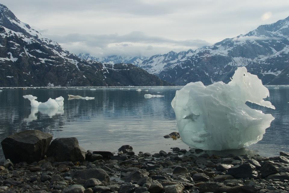 Glacier Bay Kayak Trip 673