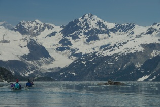 Johns Hopkins Inlet 2 - Glacier Bay