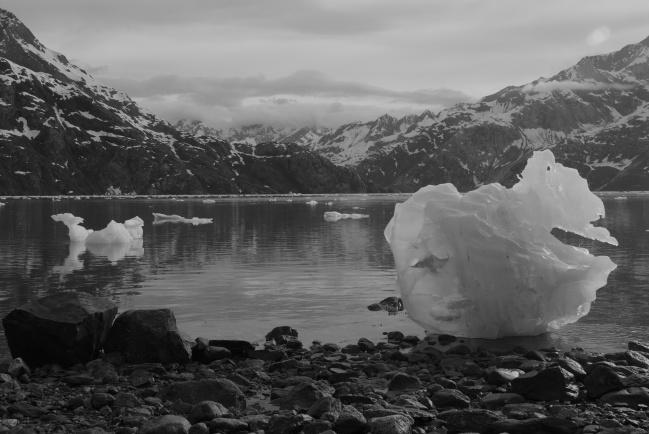 Mini Icebergs - Glacier Bay