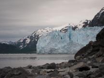 Glacier - Glacier Bay