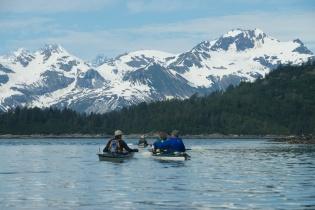 Paddlers - Glacier Bay