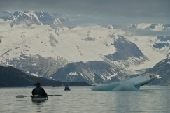 Inlet and Mountains - Glacier Bay