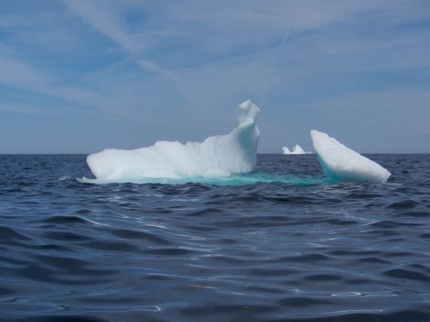 Icebergs - Newfoundland
