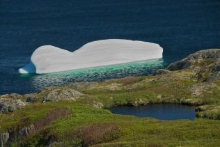 Iceberg 2 - Newfoundland