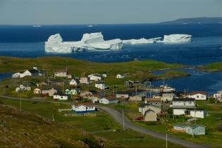 Icebergs off Goose Cove - Newfoundland