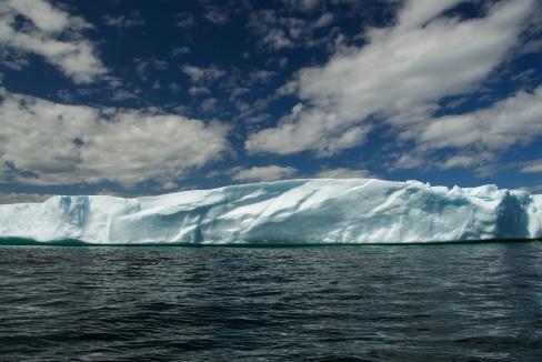 Iceberg 1 - Newfoundland