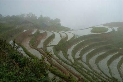 Vietnam-7